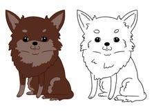Schets van beeldverhaal leuke chihuahua op witte achtergrond In kleuren vectorillustratie van mooi weinig zitting van een hond op stock illustratie