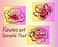 Schets van bloemen - close-up Royalty-vrije Stock Foto's