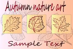 Schets van de herfstbladeren Stock Fotografie