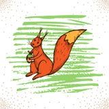 Schets van eekhoornhand getrokken vectorillustratie royalty-vrije illustratie