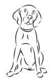 Schets van een hond Stock Afbeeldingen