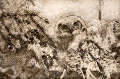 Schets van een Jonge Jonge uil die Direct Oogcontact van Zijn Nest opnemen vector illustratie