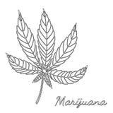 Schets van marihuana op witte achtergrond wordt geïsoleerd die Royalty-vrije Stock Fotografie