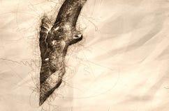 Schets van Onrijpe Rode De steel verwijderde van Havik tijdens de vlucht stock illustratie
