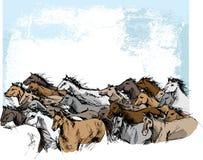 Schets van paarden het lopen Stock Afbeeldingen