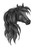 Schets van zwart rasecht paardhoofd Stock Afbeelding