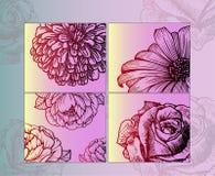 Schetsen - mooie gedetailleerde bloemen, close-up Heldere affiche Stock Afbeelding
