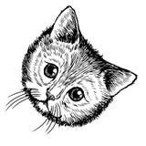 Schetsillustratie uit de vrije hand van weinig kat, katje Royalty-vrije Stock Afbeelding