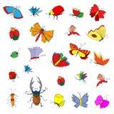 Schetsillustraties van insecten Stock Fotografie