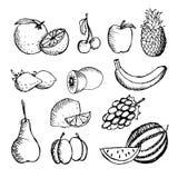 Schetsmatig die fruit op witte achtergrond wordt geplaatst royalty-vrije illustratie