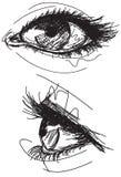 Schetsmatige vrouwelijke ogen Stock Afbeeldingen