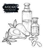 Schetsreeks avocadoproducten, olie, room Stock Foto's