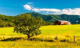 Scheune, Baum und Ansicht der Appalachians im Shenandoah Valley Stockfotos