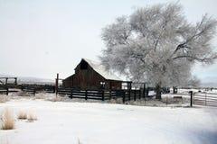 Scheune im Winter Stockfotografie
