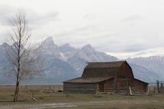 Scheune und der Teton-Gebirgszug Stockfotografie