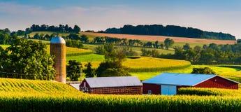 Scheune und Silo auf einem Bauernhof in ländlichem York County, Pennsylvania Stockbilder