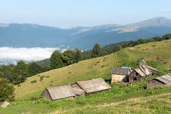 Scheunen und Kühe in den Bergen stockfotos