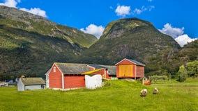 Scheunen und Schafe in einem Bauernhofdorf Lizenzfreie Stockfotos