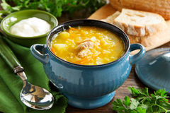 Schi-cabbage soup. royalty free stock photo