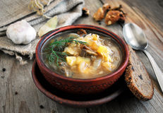 Schi: traditional russian soup with cabbage Royalty Free Stock Photo