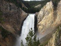 Schiacciando, cadute di Yellowstone immagine stock libera da diritti