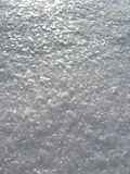 Schicht eines Schnees auf einem Baum Lizenzfreie Stockbilder