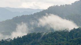 Schichten des hohen Berges, nebelig auf Regenwald stockbilder
