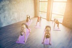 Schichten Sie von fünf geeigneten Yogadamen der Junge auf und das Ausdehnen von Übung machen Lizenzfreies Stockfoto