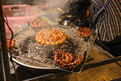 Schießen einer Mahlzeit auf dem Grill stockfotografie