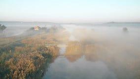 Schießen vom Brummen, am frühen Morgen fliegend über den nebelhaften Fluss stock video footage