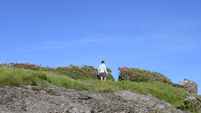 Schieber Pan Woman Hikes Over Rock und Rhododendron stock video footage