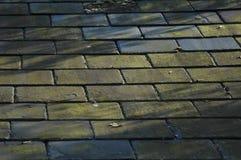 Schiefer-Dach Stockfoto