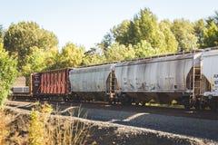 Schienenfahrzeuge auf Bahnen in einem treed Bereich Stockbilder