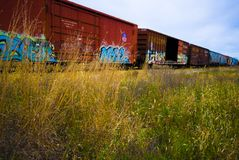 Schienenfahrzeuge mit bunten Graffiti lizenzfreie stockbilder