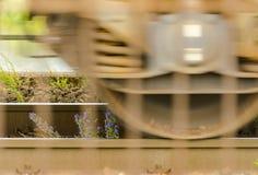 Schienenstrang und Blumen Stockfoto