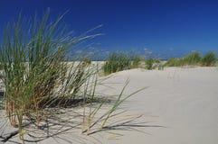 Schiermonnikoog ö, vit sandstrand holland Arkivfoto