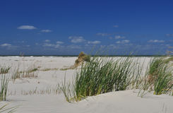 Schiermonnikoog island, white sand beach. Holland Royalty Free Stock Photo