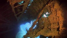 Schiffswrack Unterwasser im Roten Meer stock video