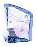 Schijf die in het ijs wordt bevroren Royalty-vrije Stock Afbeeldingen