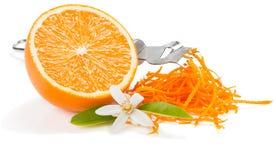 Schil en bloem van oranje fruit stock fotografie