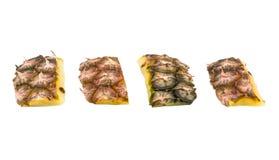 Schil van ananas royalty-vrije stock afbeeldingen