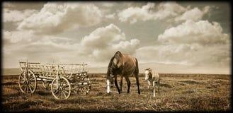 Schilder landschap Royalty-vrije Stock Afbeeldingen