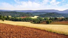 Schilderachtig aard landelijk landschap met gebieden Stock Foto