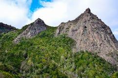 Schilderachtig bos en de rots Stock Foto's