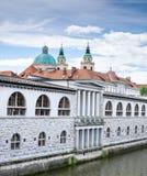 Schilderachtig groot panorama op oude centrale markt naast rivier Ljubljanica bij Sloveens kapitaal, Ljubljana stock fotografie