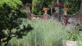 Schilderachtig nam tuin met een fontein toe Stock Fotografie