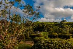 Schilderachtig park met verdamping van natuurlijke actieve geisers bij royalty-vrije stock fotografie