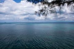 Schilderachtig strand en de mening van Indische Oceaan stock foto's