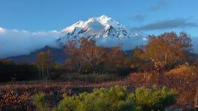 Schilderachtig vulkanisch landschap, mening van rotsachtige kegelvulkaan, geeloranje bos stock footage