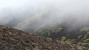 Schilderachtig vulkanisch landschap van Onderstel Etna, Sicilië, Italië stock video